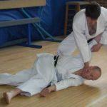 Karate take-down and strike
